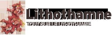 Lithothamne Logo